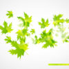 Abstract Leaves Powerpoint Background