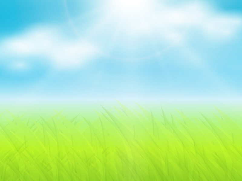 Grass and sun ppt backgrounds