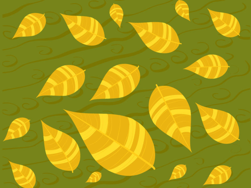 Dried ornamental Foliage PPT Backgrounds