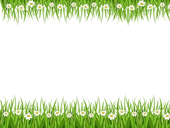 Summer Flowers Beautiful PPT Backgrounds