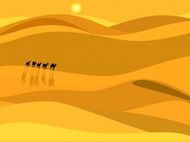 African Desert Presentation