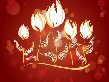 Fire Flowers Design Slide