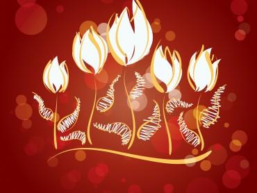 Fire Flowers Slide