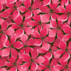 Red Seamless Floral PPT Backgrounds
