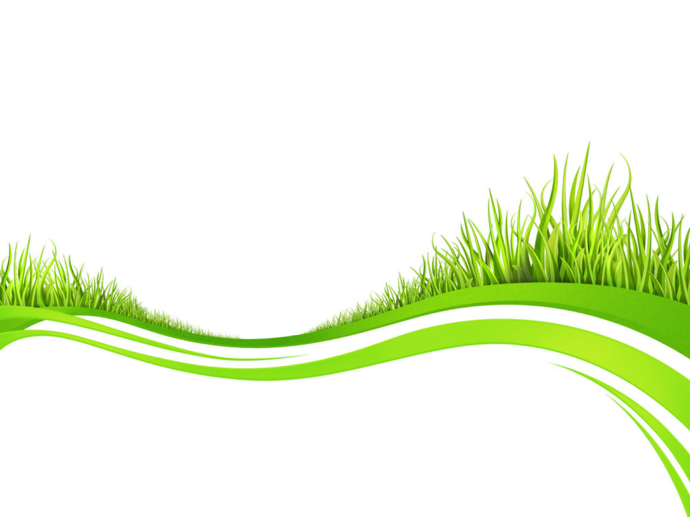 Spring fresh plant grasses ppt templates ppt backgrounds green spring fresh plant grasses ppt templates toneelgroepblik Choice Image