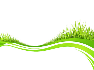 Spring fresh plant grasses ppt templates