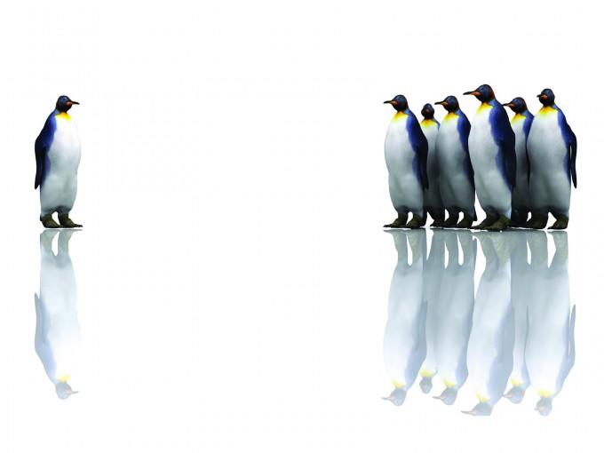 Penguins Powerpoint Vector PPT Backgrounds