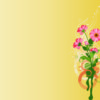 Pink Flowers on Yellow Backgrounds
