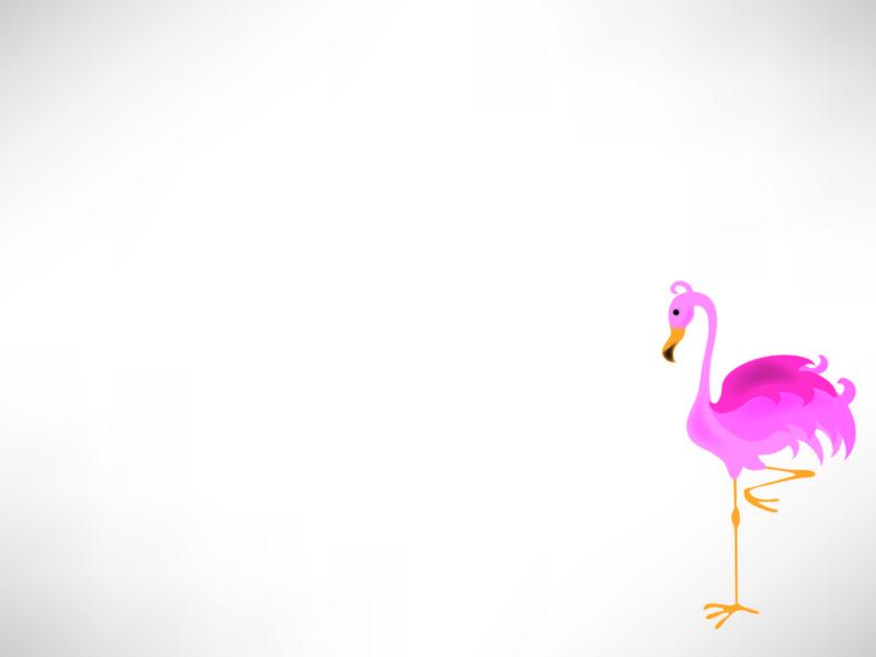 Animal Pelican Powerpoint Design