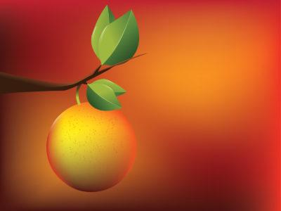 Apricot orange powerpoint templates