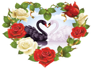 Black swan in heart ppt backgrounds