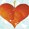 Hearth leaf powerpoint presentation