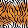 Tiger Skin Pattern PPT Backgrounds