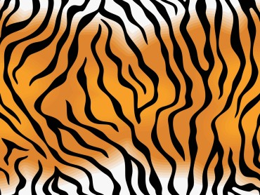 Tiger Skin Pattern PPT