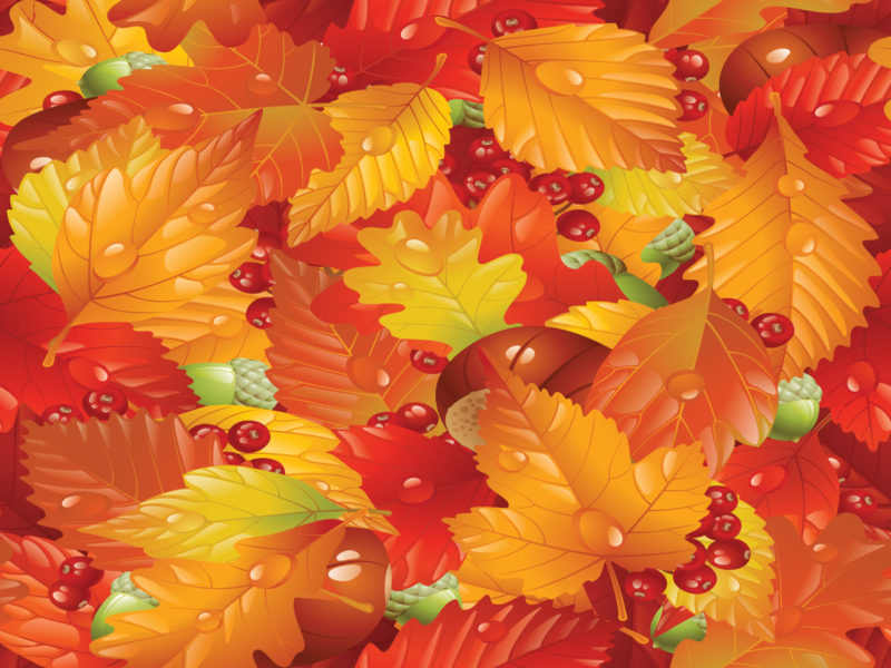 Natural Leaves in Autumn PPT Backgrounds
