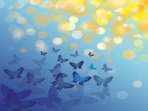 Animal Butterfly Blue PPT Backgrounds