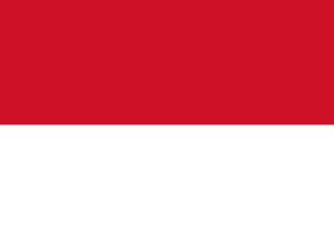 Flag of Indonesia PPT Background