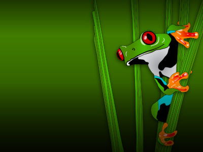 Green Frog Animal ppt backgrounds