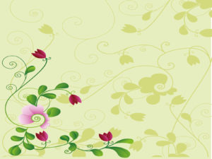 Flower and Shodow PPT Backgrounds