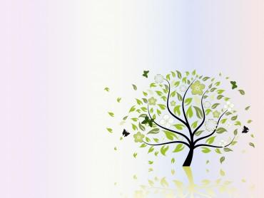 Folio Tree Nature