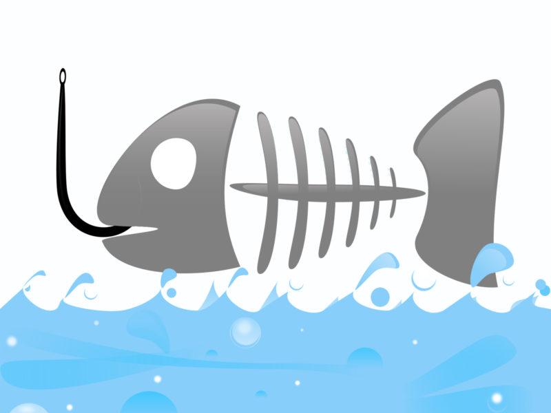 Fish Logo on Sea Backgrounds