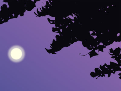 Sky Moon PPT Backgrounds