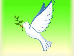 Dove Birds PPT Backgrounds