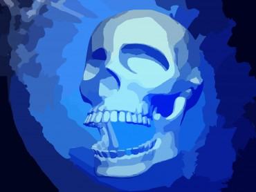 3d Medical Skull