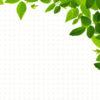 Real Leaves Design PPT