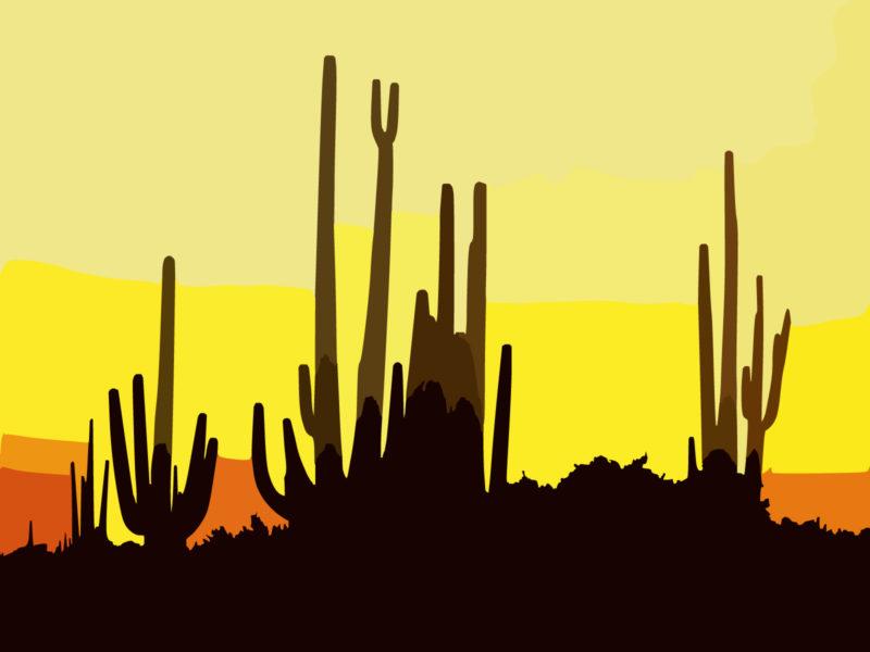 Saguaro Cactus At Sunset Arizona Backgrounds PPT