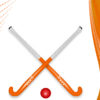 Hockey Stick and Ball PPT Backgrounds