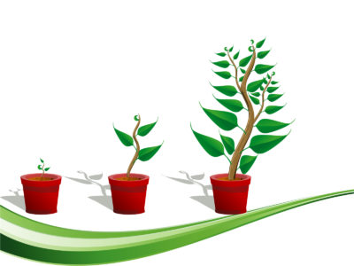 Green Plants Growth PPT Backgrounds