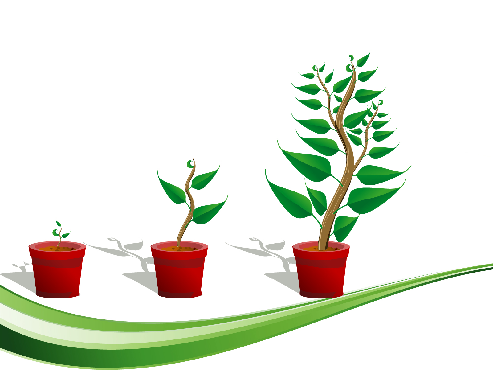 Christmas Home Design Games Green Plants Growth Backgrounds Green Nature Templates