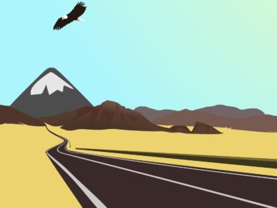 The Mexican Desert Drive Freely Backgrounds
