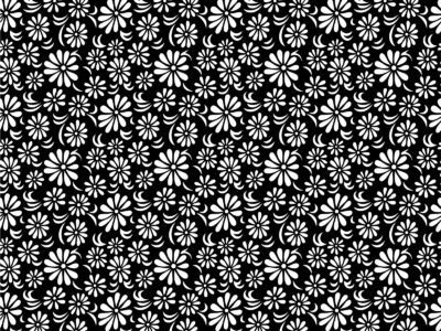Black white floral ppt backgrounds