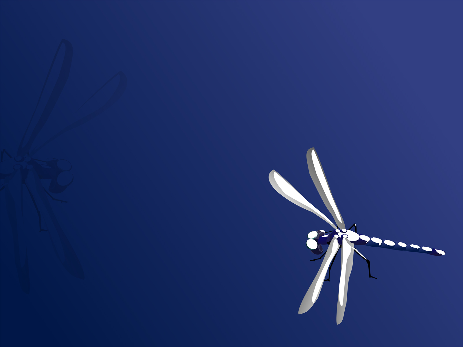 Blue Dragonfly Backgrounds
