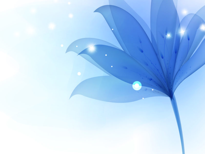 Blue Lily Flowers PPT Backgrounds