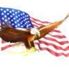 Eagle Flag Bob Design Backgrunds