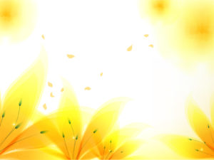 Fresh Yellow Flowers Backgrounds