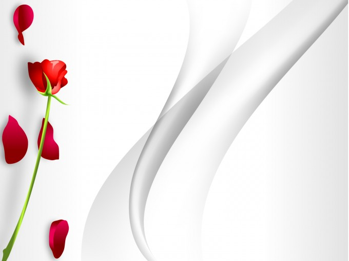 Redrose with Abstract PPT Backgrounds