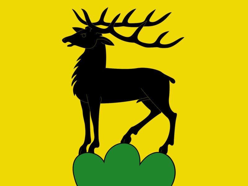 Deer Animal PPT Backgrounds