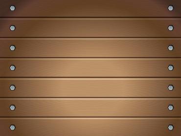 Wood Tissues Presentation