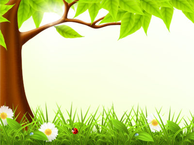 Cute forest spring backgrounds
