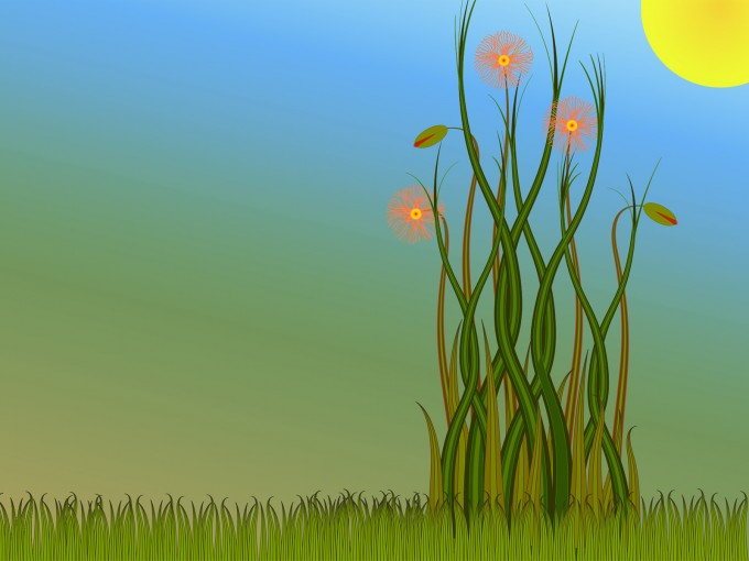 Grass and Flowers PPT Backgrounds