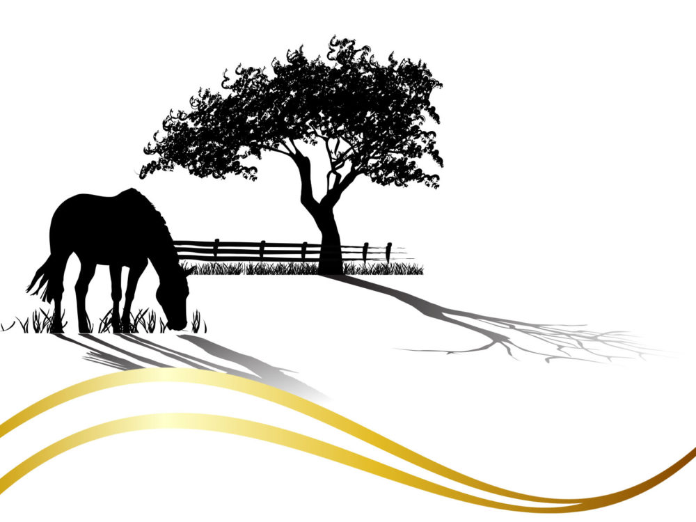 Horse grazing ppt backgrounds animals black templates ppt grounds normal resolution toneelgroepblik Choice Image