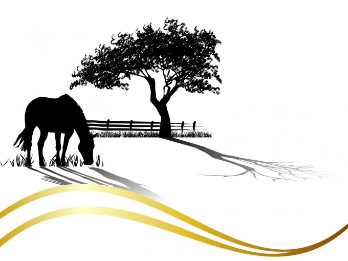 Horse Grazing PPT Backgrounds