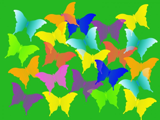 Colorful Butterflies PPT Backgrounds