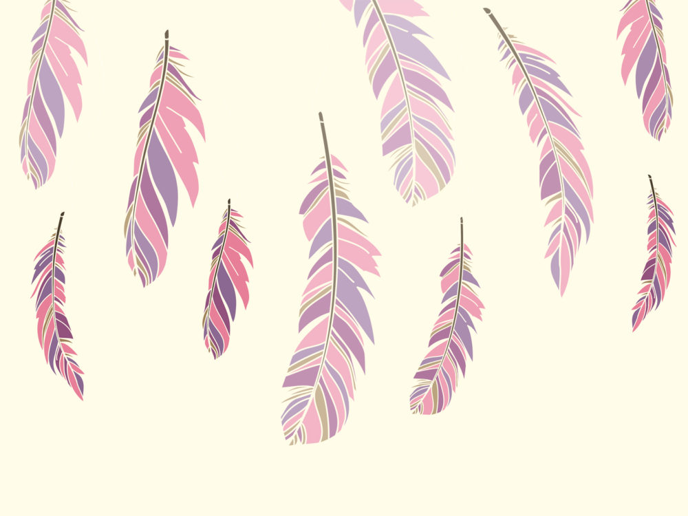 Free Download Feathers Backgrounds