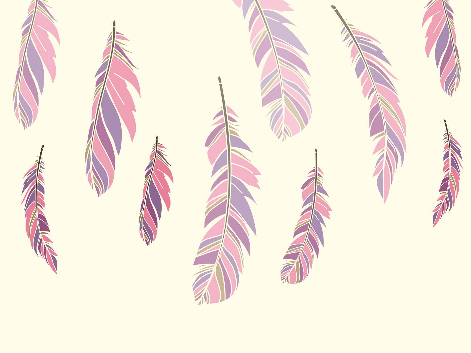Colour Feathers Ppt Backgrounds Brown Design Pattern