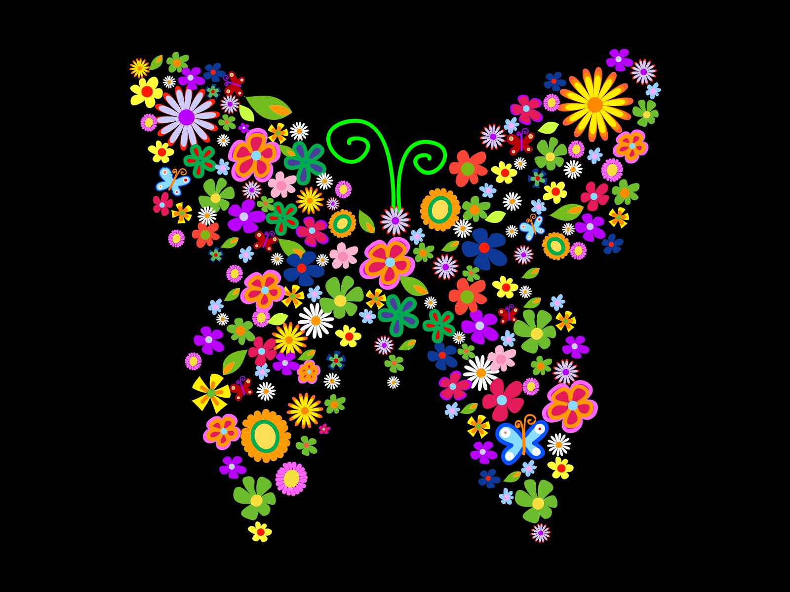 colorful flowers and butterflies ppt backgrounds animals